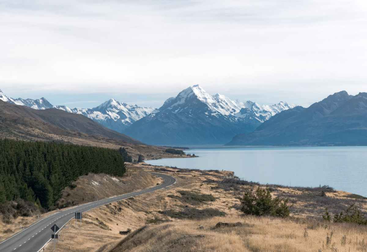 Visiting New Zealand? Guide To Driving On Their Roads